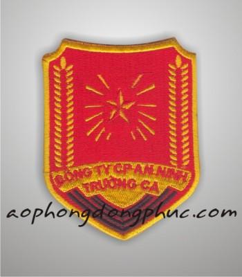 theu vi tinh logo cong ty bao an